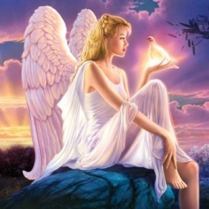 angel picture